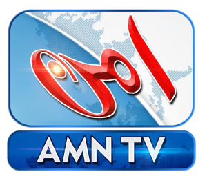 AMN TV logo